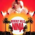 Un Ninja en Beverly Hills